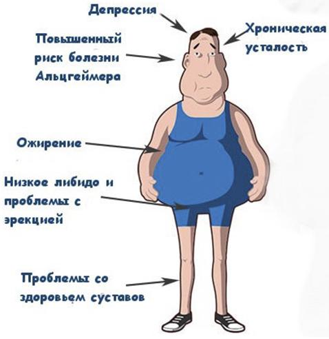 Кортизол гормон надпочечников, кортизол гидрокортизон, кортизол для чего нужен, повышенный уровень кортизола, как снизить уровень кортизола в организме | Фактор Жизни